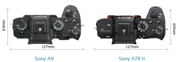 Sony-Alpha-A9-vs-Sony-Alpha-7R-II-top-view-size-comparison